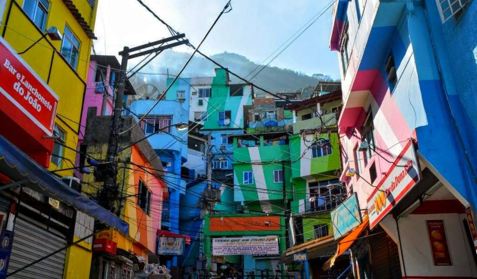 Hibiscus & Nomada : - - Favela Painting
