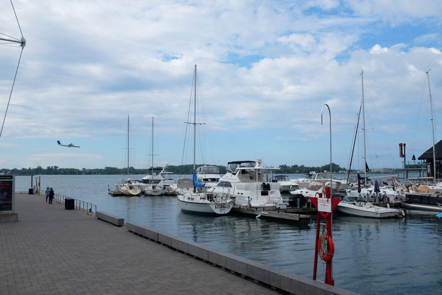 Hibiscus & Nomada : Canada - HTO Park