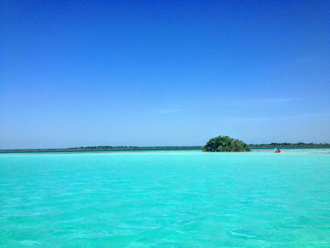 Hibiscus & Nomada : - - Cancun