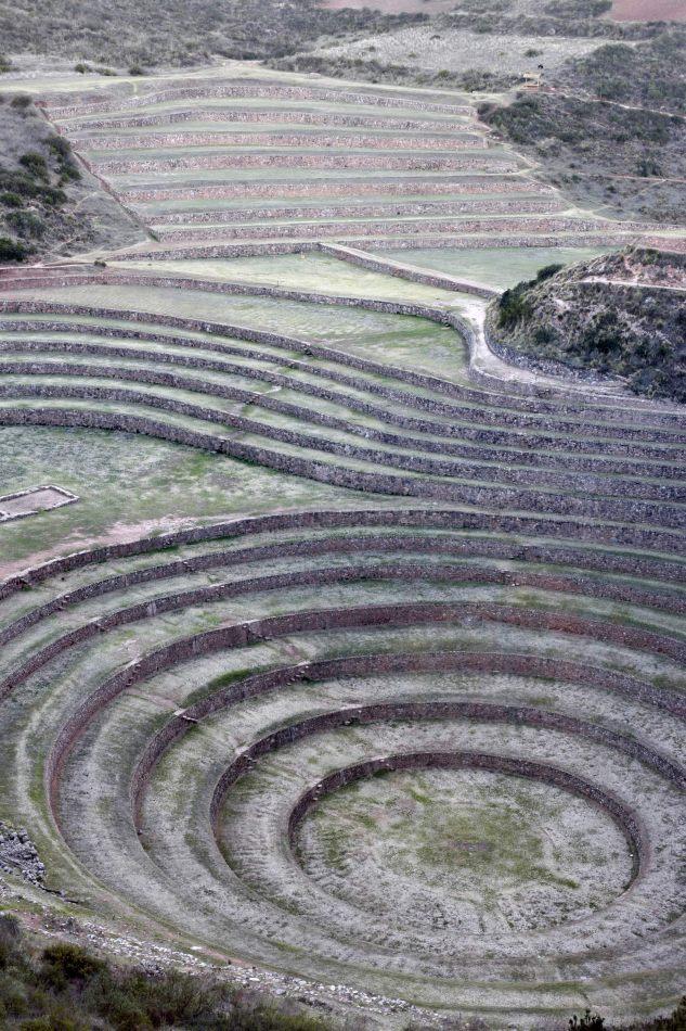 Anthony Ellis Photography: Apus - Crop Circles
