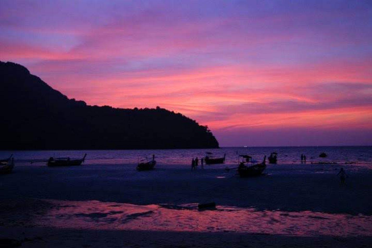 Hibiscus & Nomada : - - Koh Phi Phi Bay