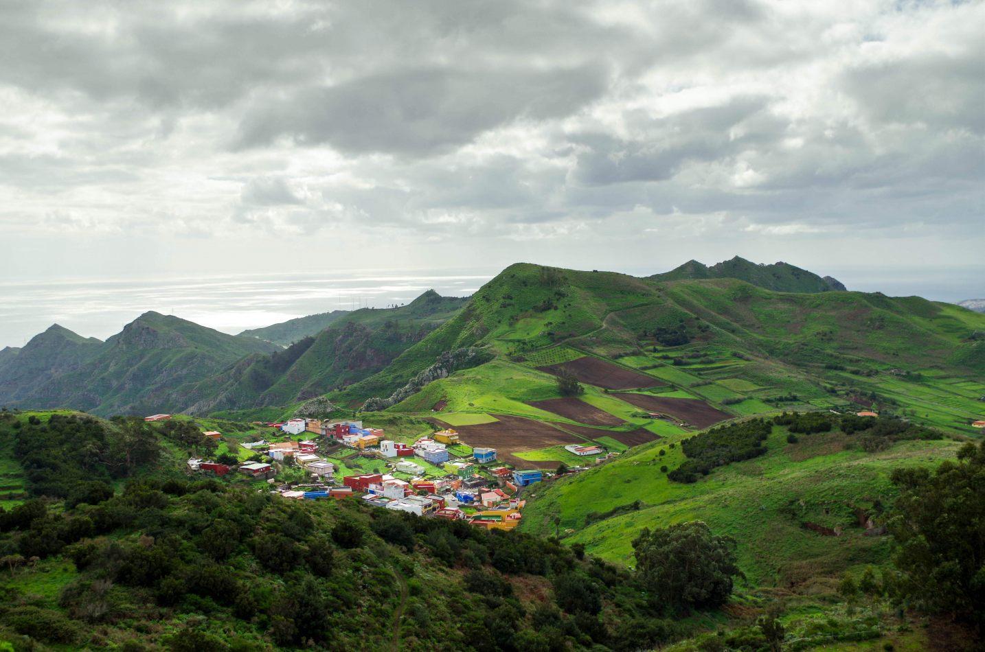 Hibiscus & Nomada : - - Tenerife