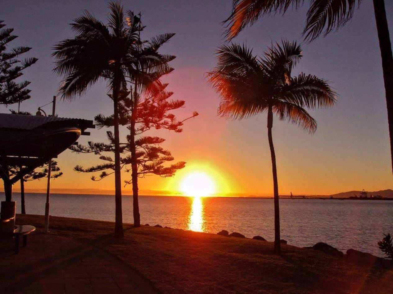 Hibiscus & Nomada : Australia - Townsville