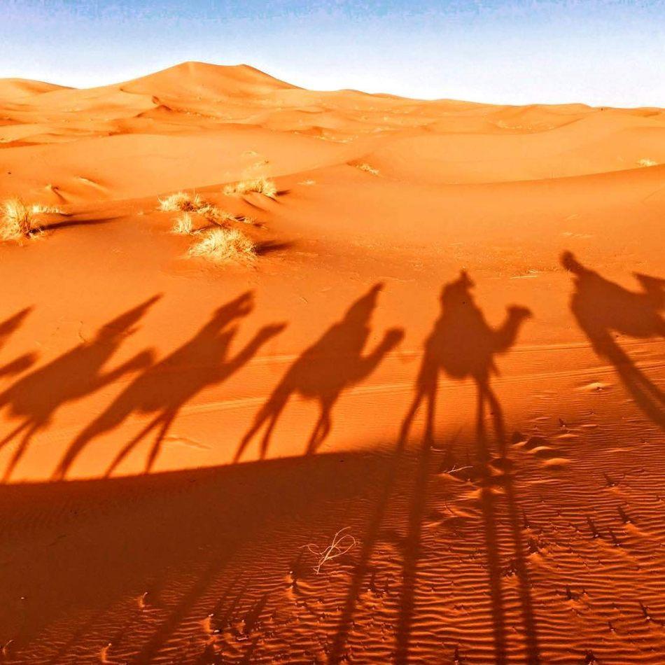Hibiscus & Nomada : Marrakech - Sahara Desert