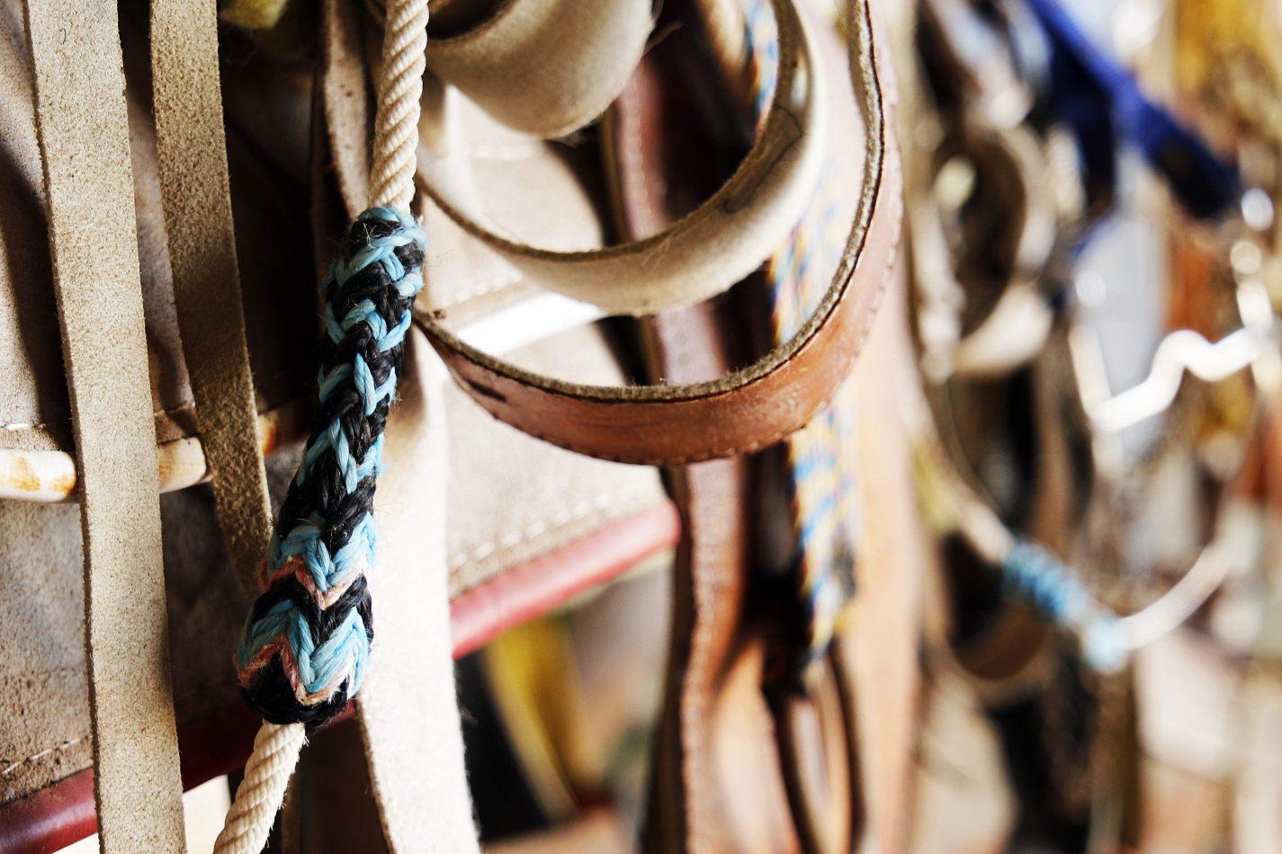 Anthony Ellis Photography: Small Sacrifices - Saddle Weave