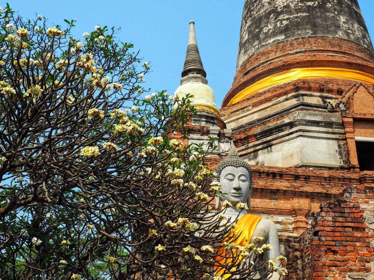 Hibiscus & Nomada : Thailand - Wat Pho Temple in Bangkok