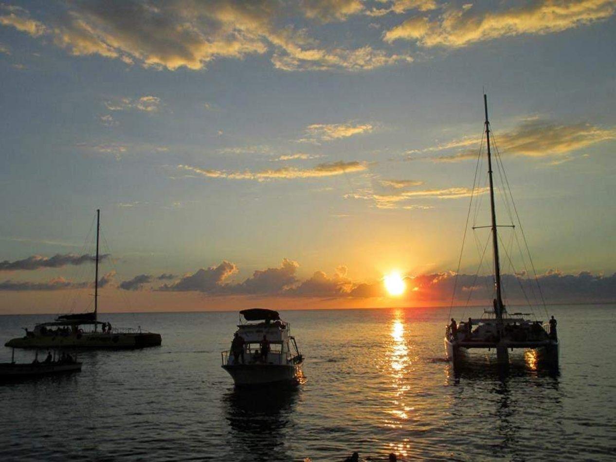 Hibiscus & Nomada : Jamaica