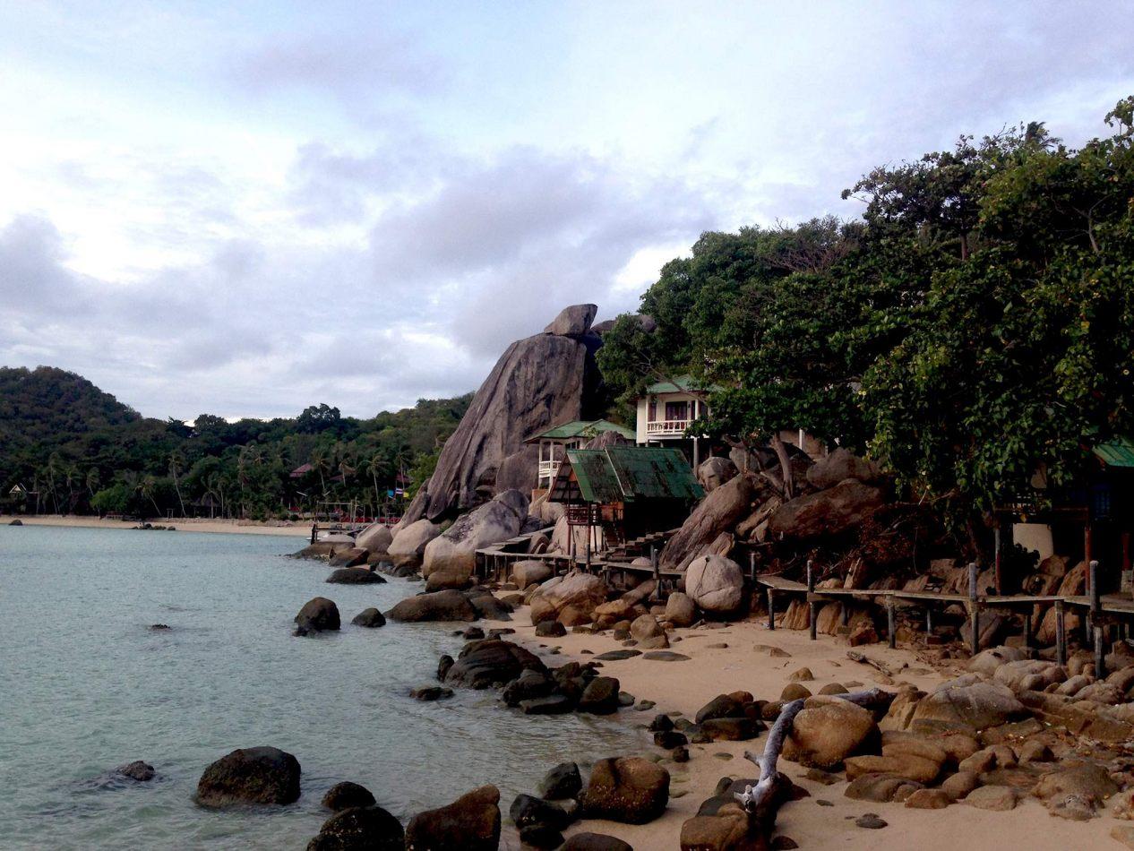 Hibiscus & Nomada : - - Freedom Beach, Koh Tao