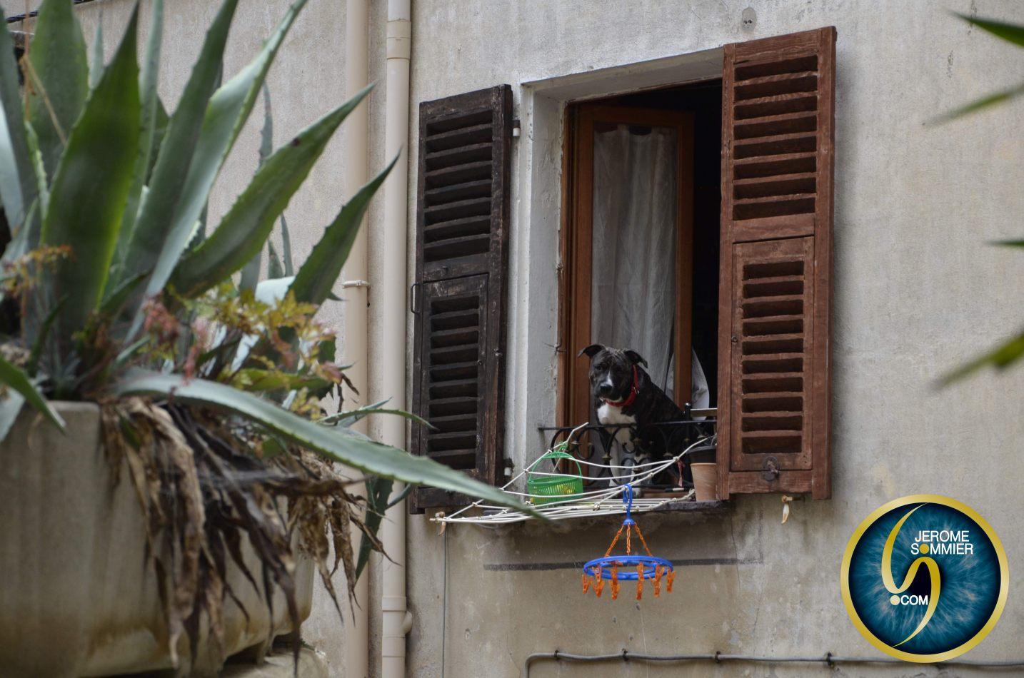 Jerome Sommier Photos - Travel & Events: Breil sur Roya