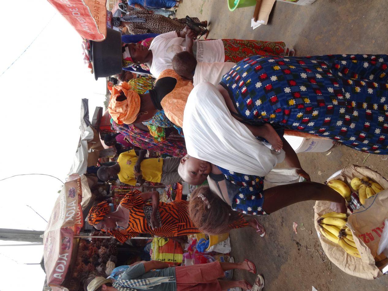 Hibiscus & Nomada : Senegal