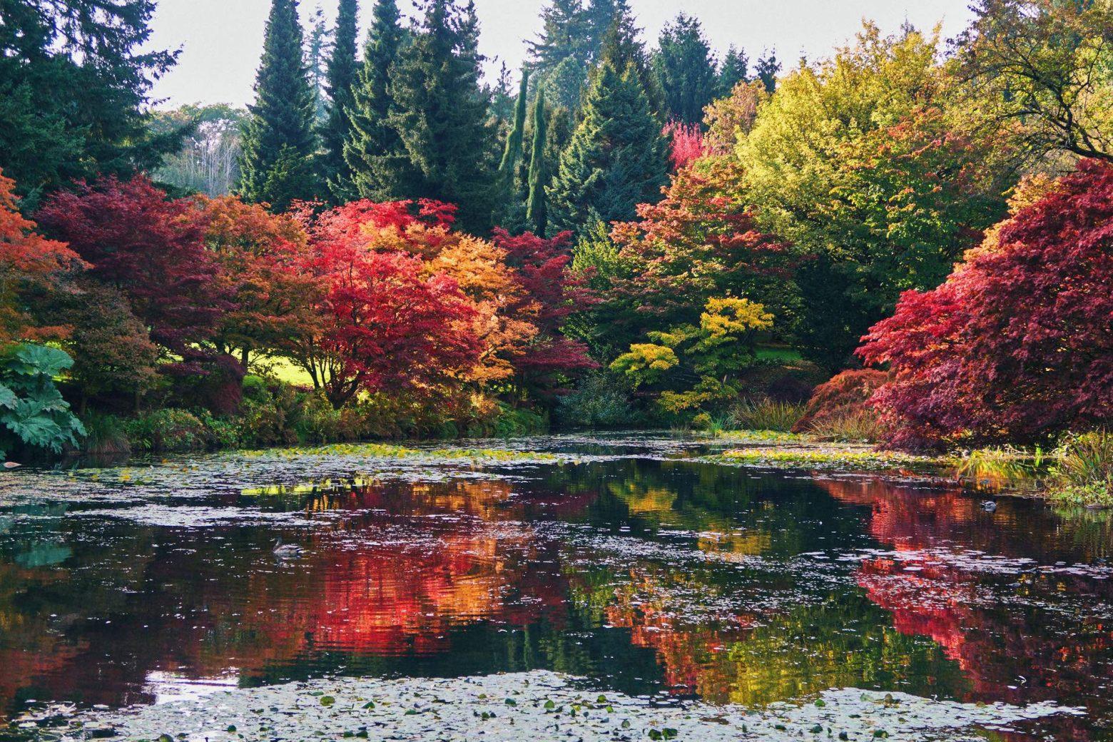Van Dusen Botanical Garden  Vancouver