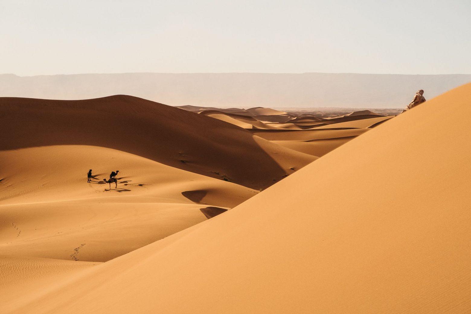 Sahara Erg Chegaga