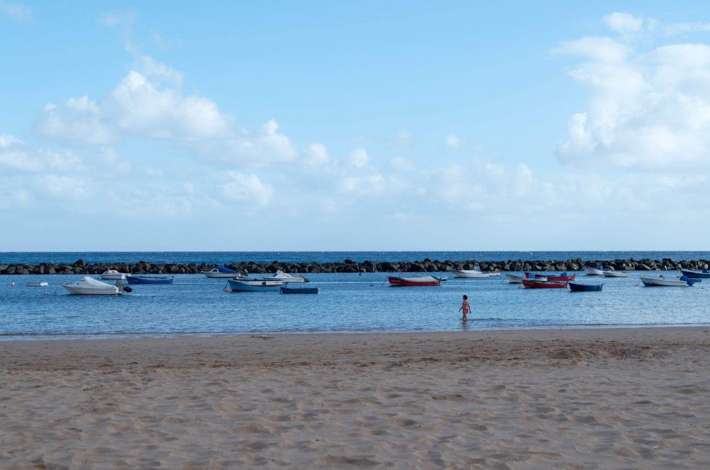 Hibiscus & Nomada : - - Tenerife Beach
