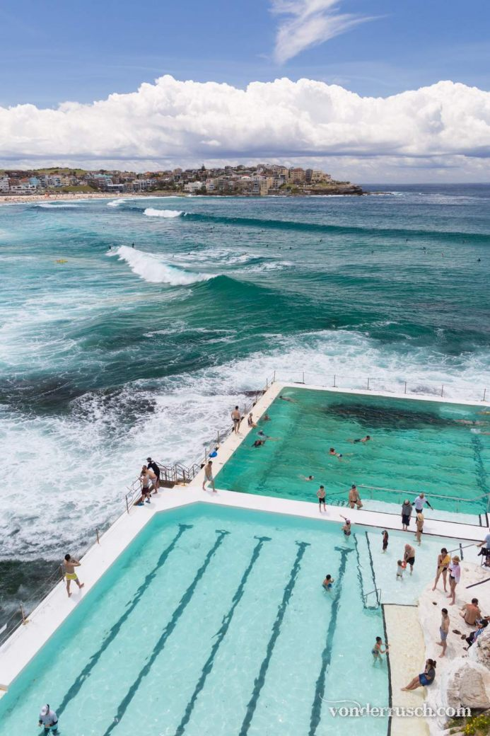 Waterlogged     Sydney Australia