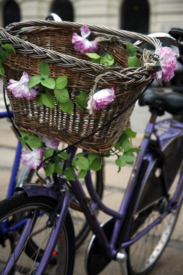Anthony Ellis Photography: Silent Afternoons - Flower Basket