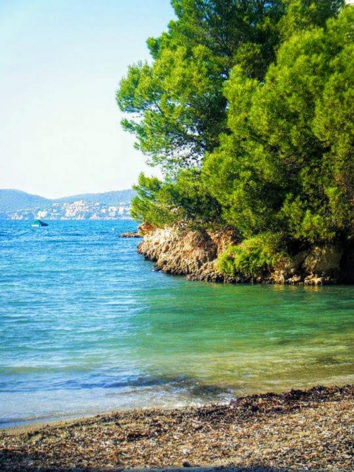 Hibiscus & Nomada : Palma de Mallorca - Coastal Life