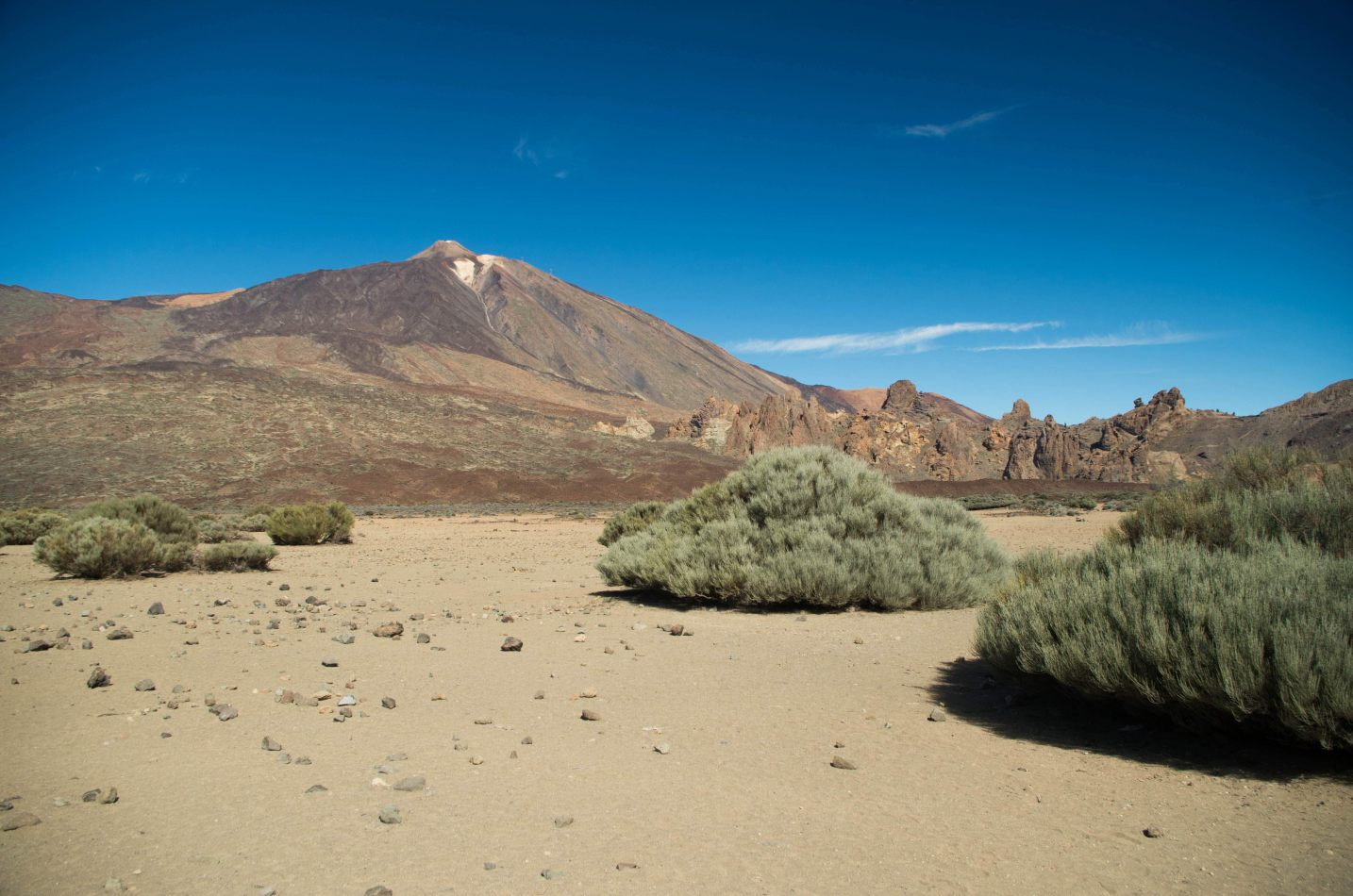 Hibiscus & Nomada : - - El Teide