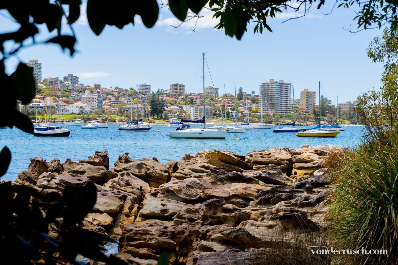 Sail Away     Manly Australia