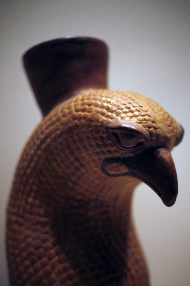 Anthony Ellis Photography: Apus - The Falcon