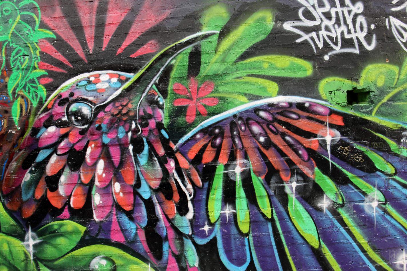 Anthony Ellis Photography: Antes del Refer� ndum - The Humming Bird