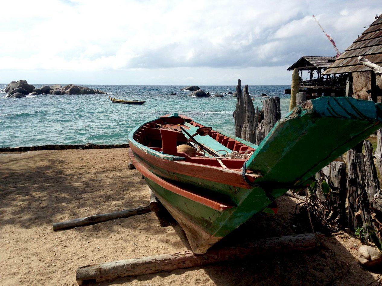 Hibiscus & Nomada : - - Sai Nuan Beach, Koh Tao