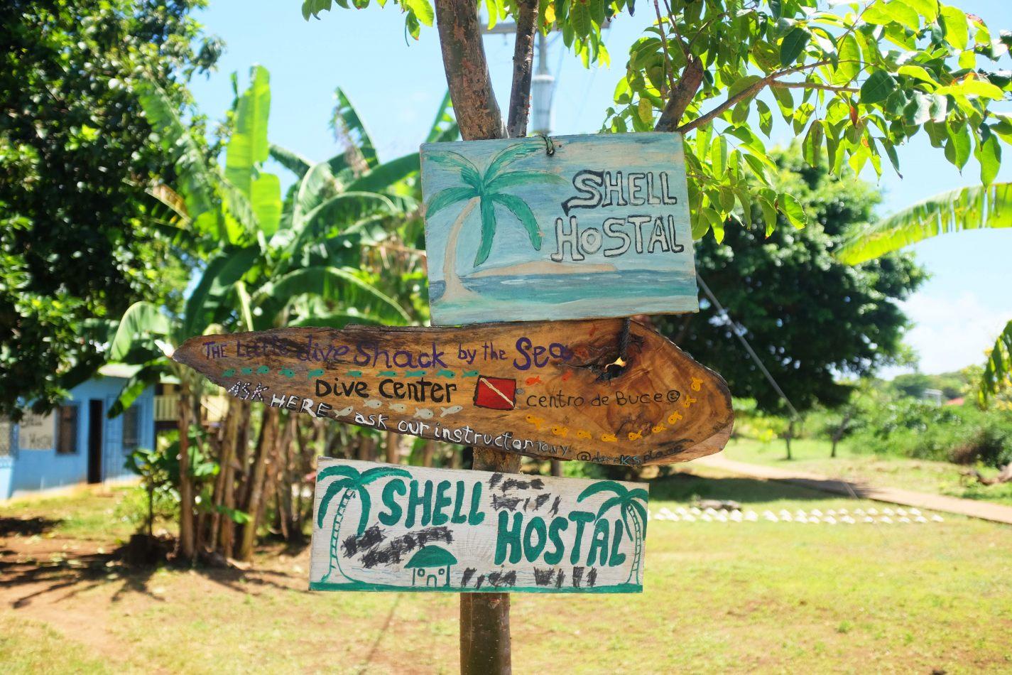 Hibiscus & Nomada : - - Shell Hostal