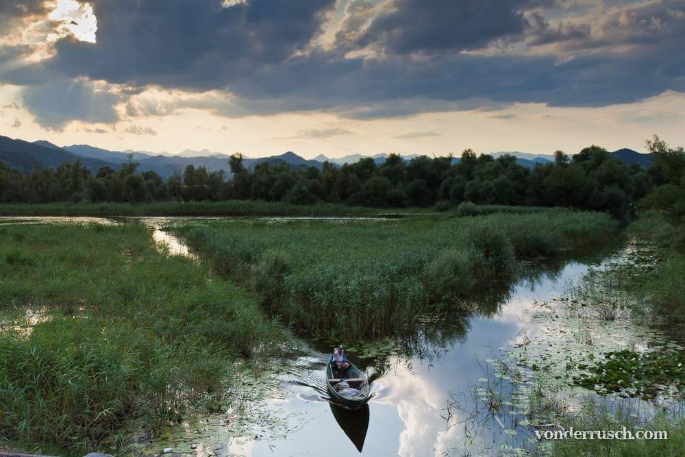 Heading Home     Lake Skadar NP Montenegro