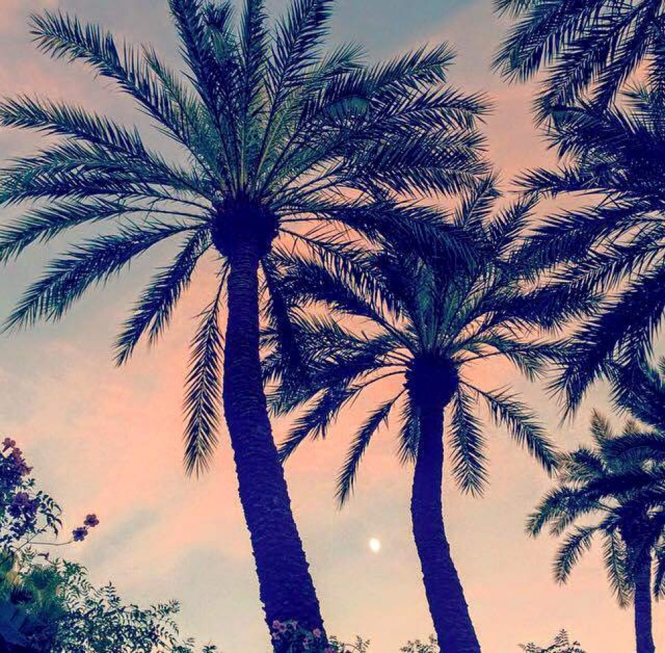 Hibiscus & Nomada : Marrakech - Sunset