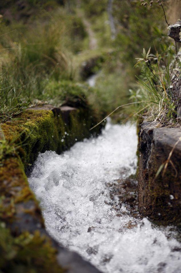 Anthony Ellis Photography: Apus - Ancient Waterways