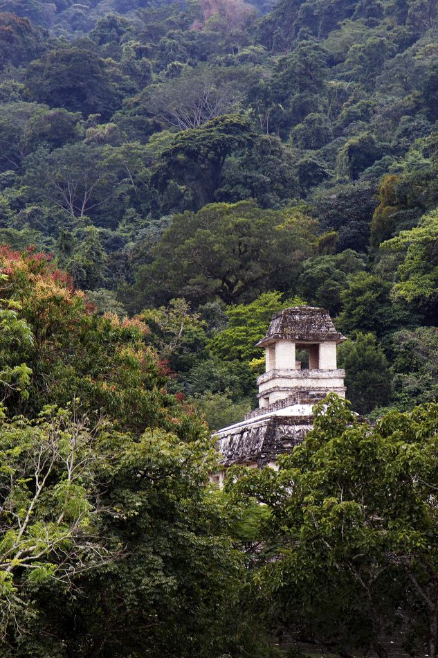 Anthony Ellis Photography: Small Sacrifices - Palenque