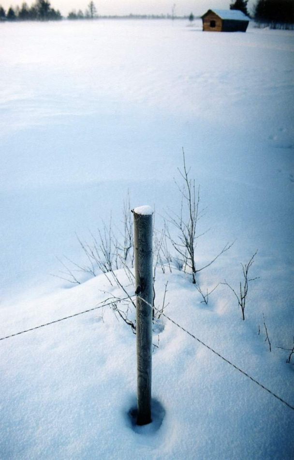 Anthony Ellis Photography: Crosses in the Snow - Electric Fence