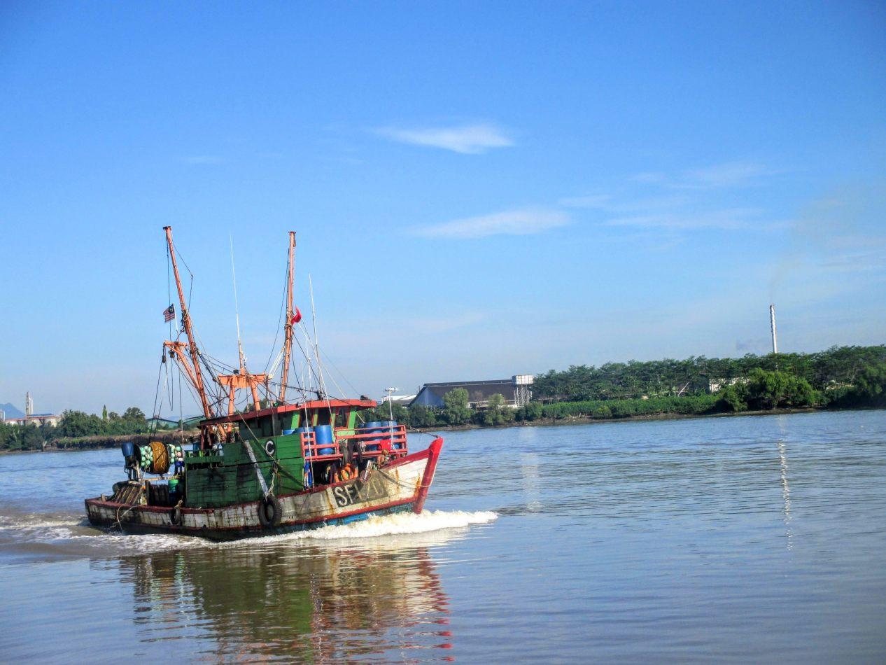 Hibiscus & Nomada : Malaysia -