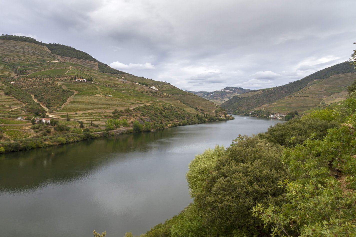 Storvandre: Douro Valley