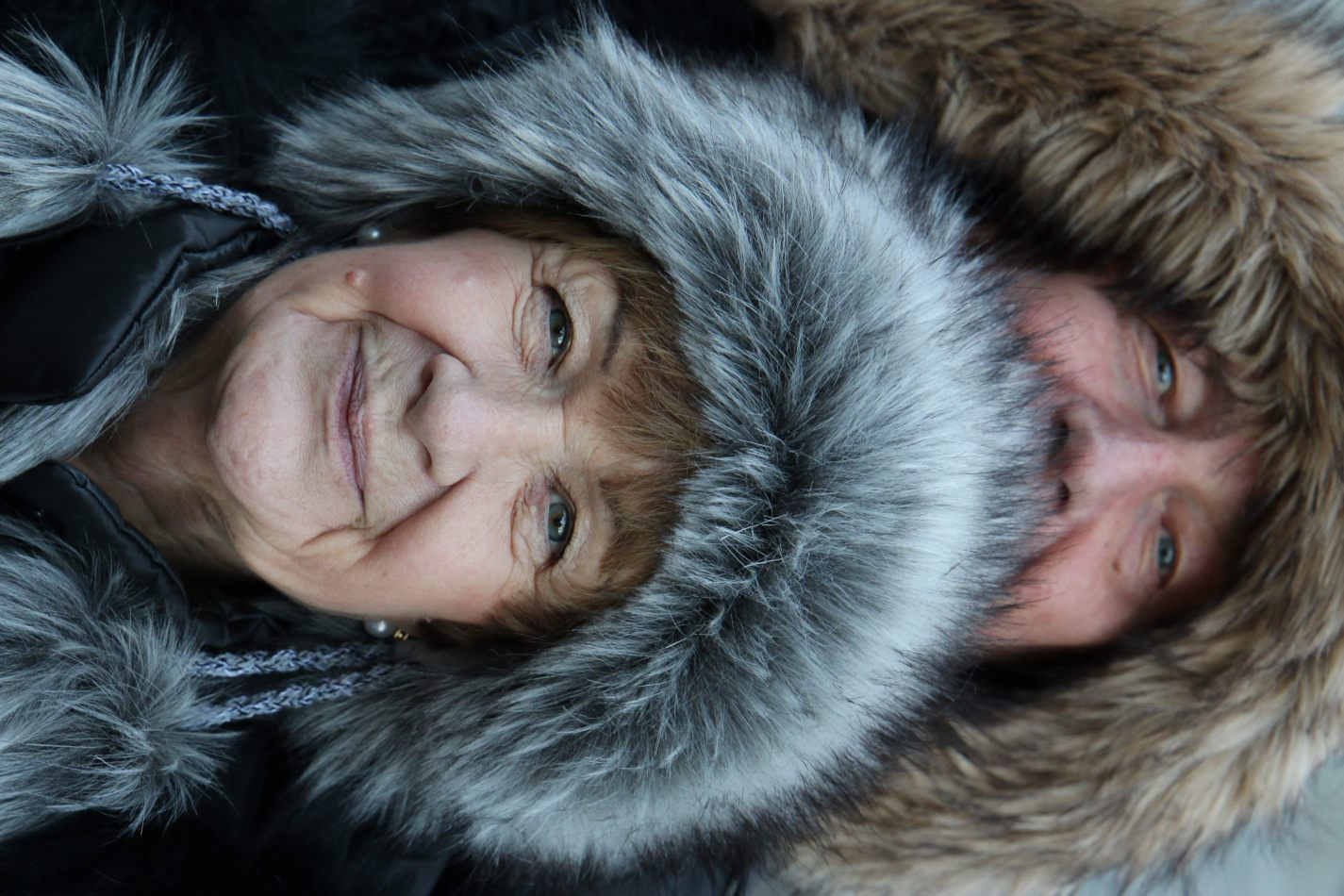 Anthony Ellis Photography: Das Ist - Mama Bear and Papa Bear