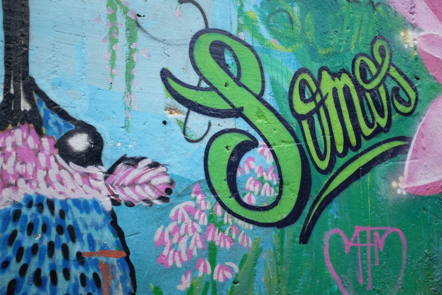 Hibiscus & Nomada : Medell� n
