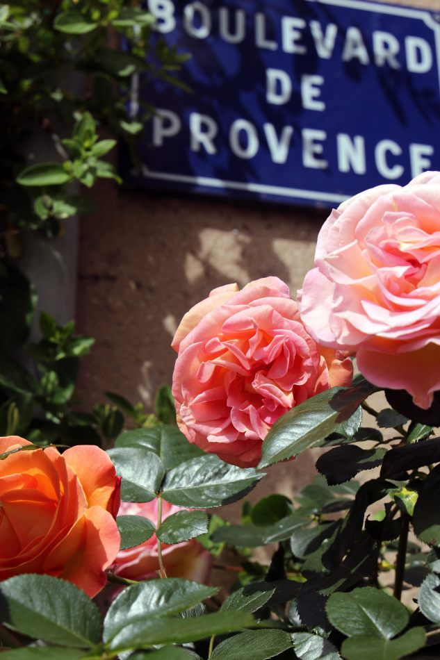 Anthony Ellis Photography: Libertine - Boulevard de Provence