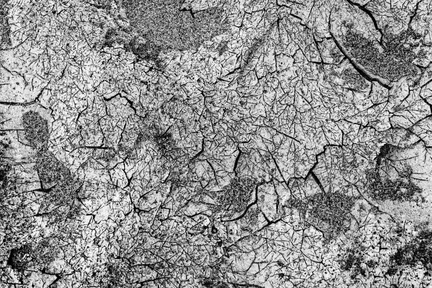 Storvandre: Golena del Po
