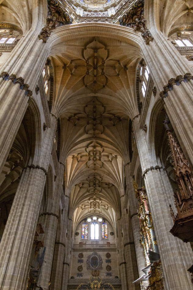 Storvandre: Salamanca