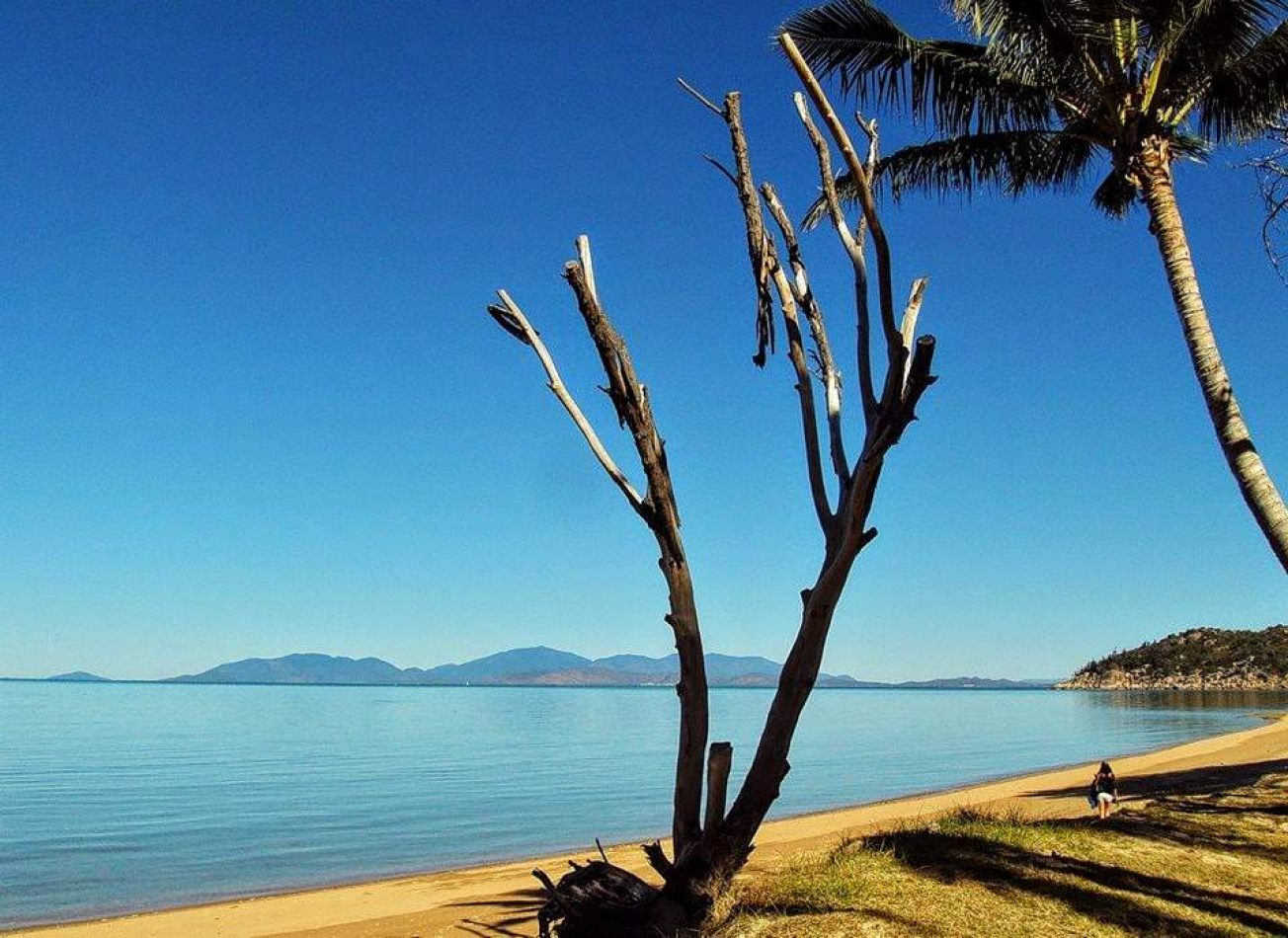 Hibiscus & Nomada : Australia - Magnetic Island