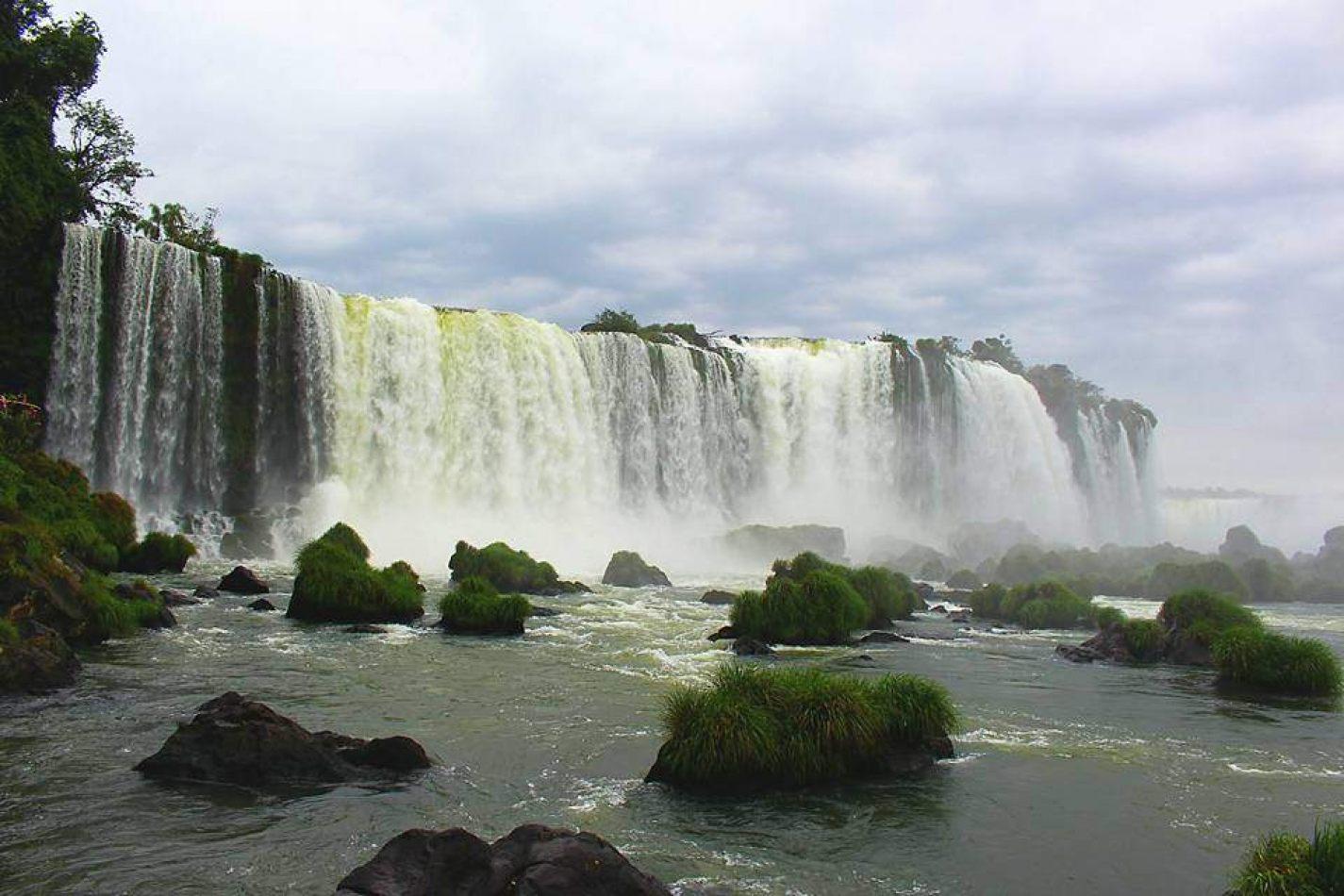 Hibiscus & Nomada : Brazil
