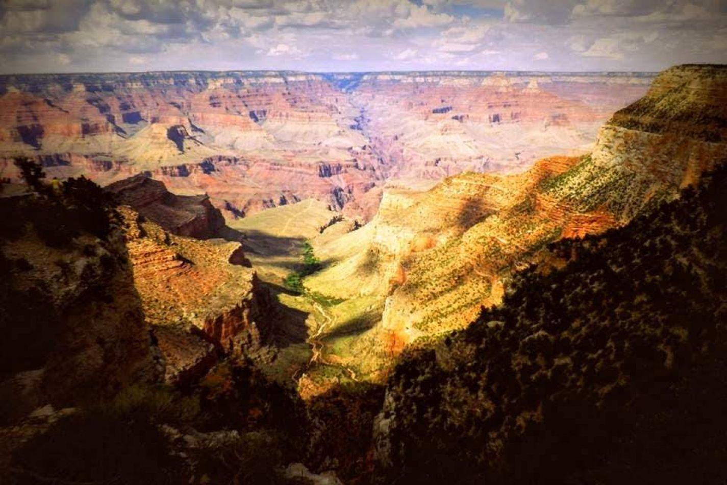 Hibiscus & Nomada : - - Grand Canyon