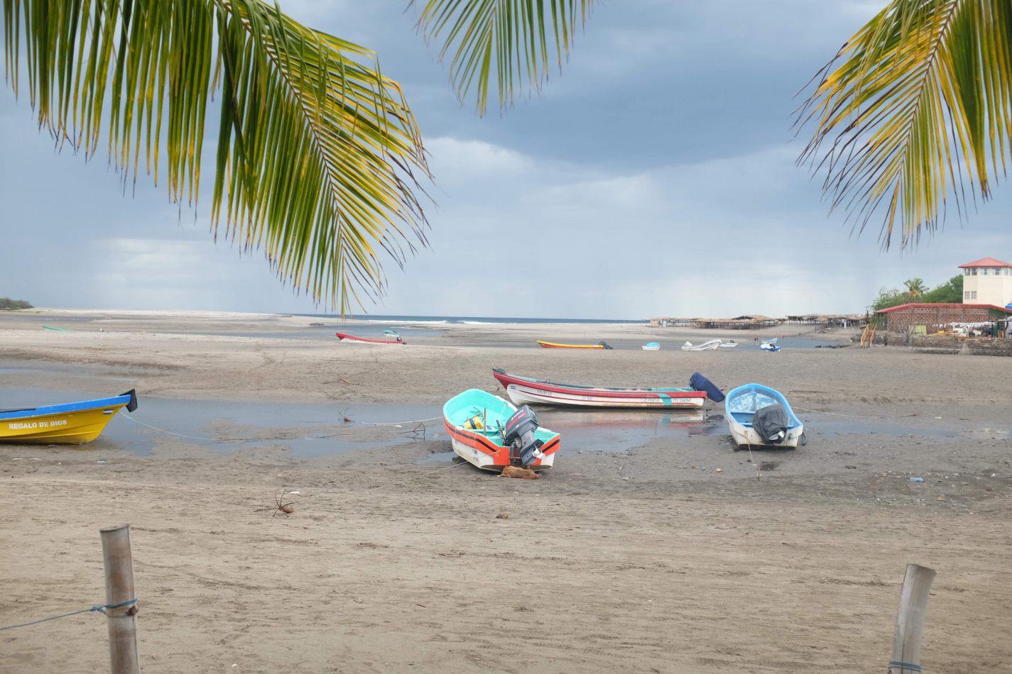 Hibiscus & Nomada : - - Hotel Barca de Oro