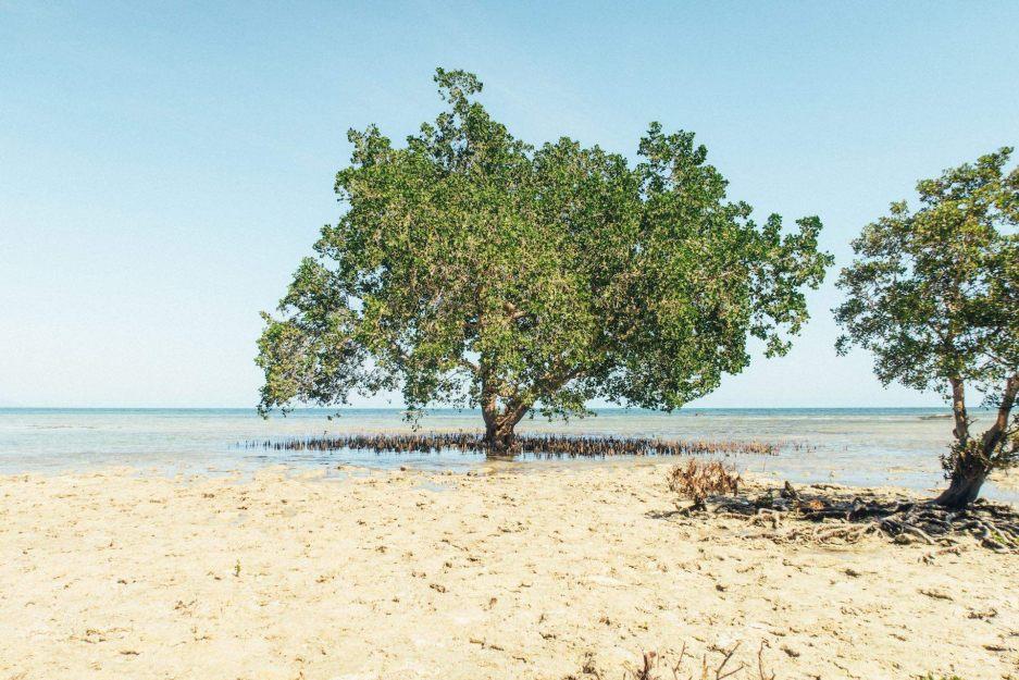 Palawan I love the Philippines