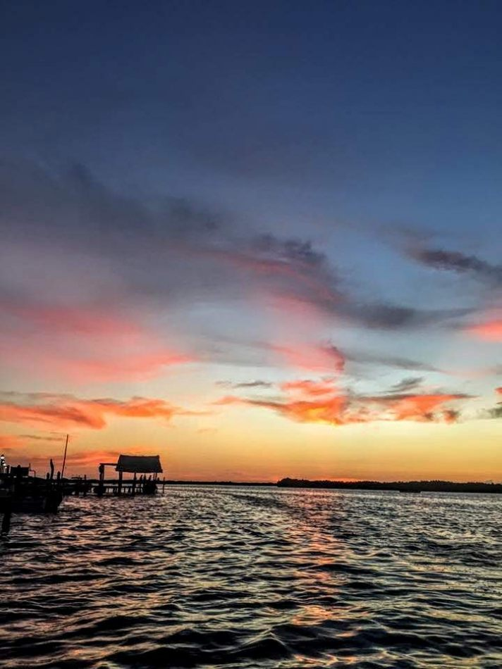 Hibiscus & Nomada : - - Sunset