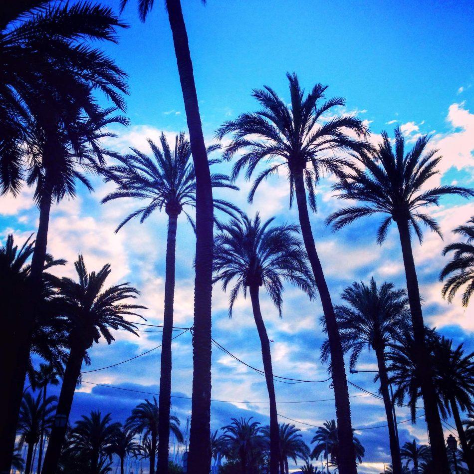 Hibiscus & Nomada : Palma de Mallorca - Marina