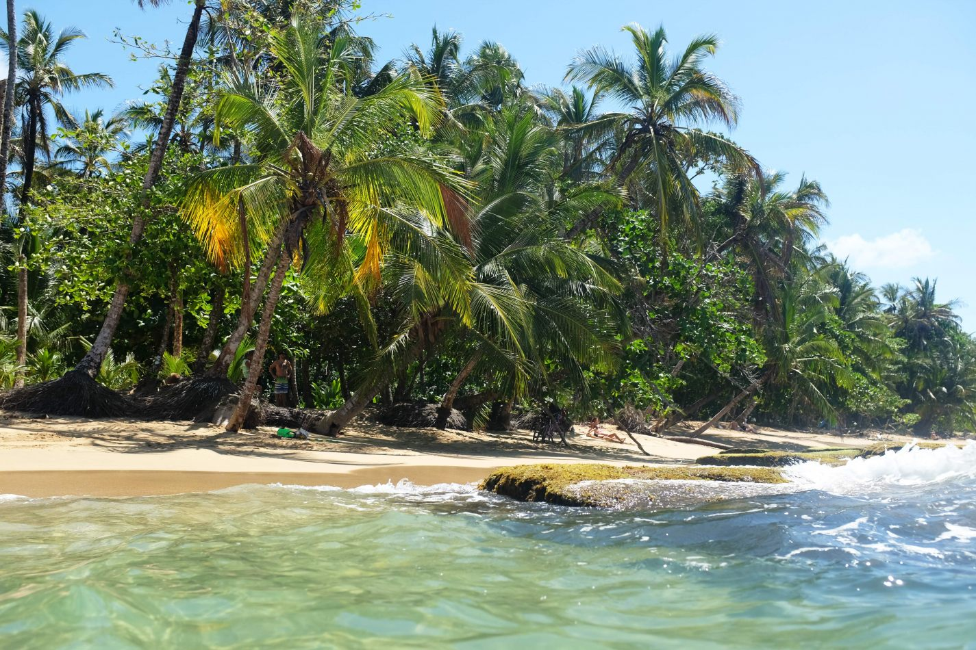 Hibiscus & Nomada : - - Playa Arrecife