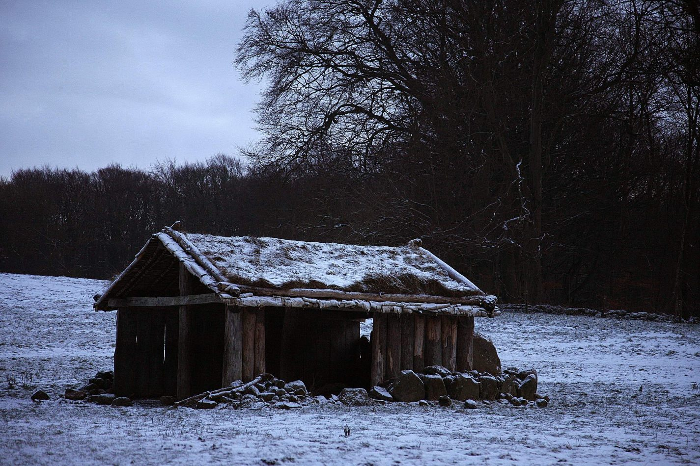 Anthony Ellis Photography: Silent Afternoons - Wood and Hides
