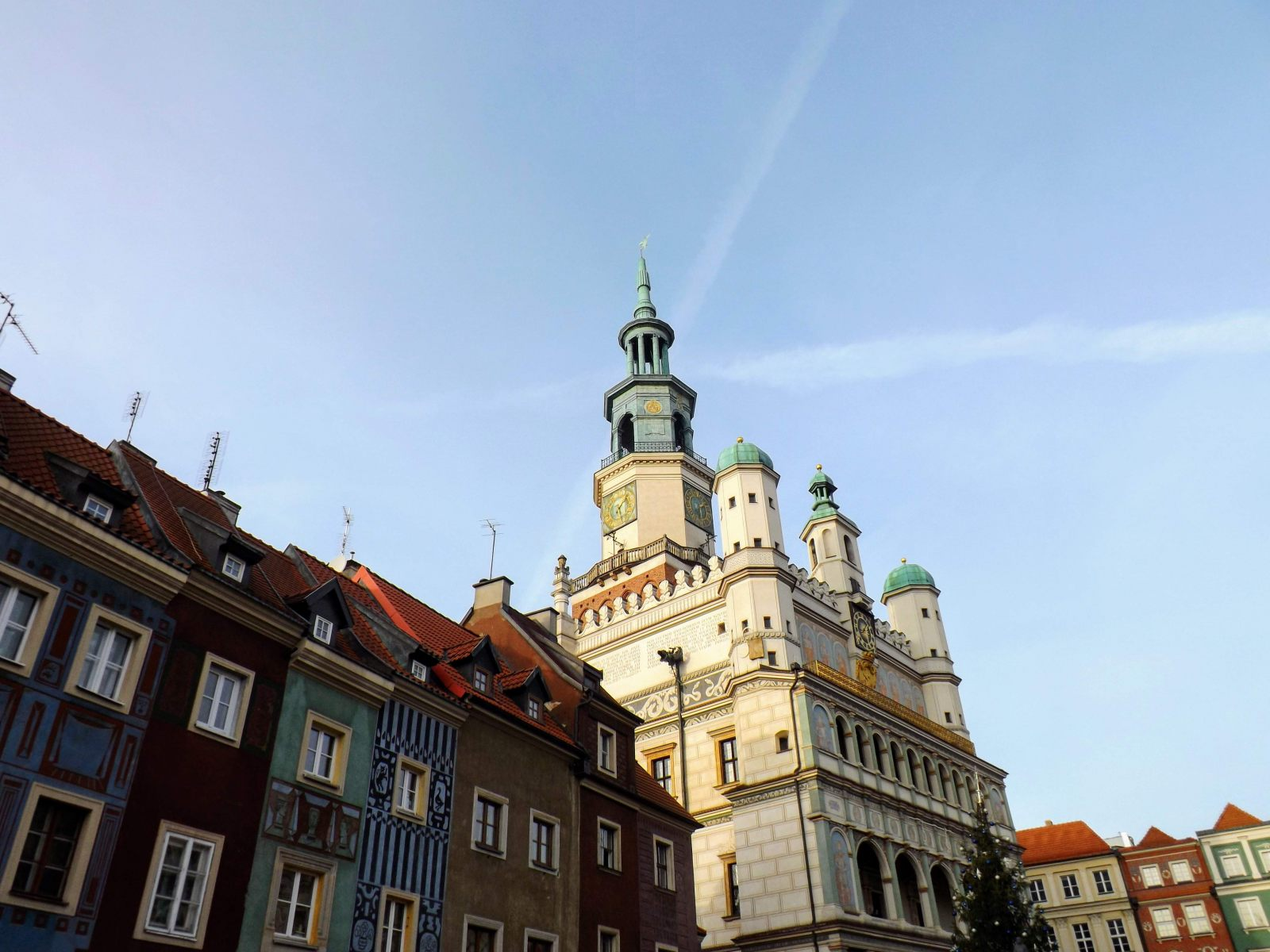 The 48 Hour Guide to Poznan Hibiscus u0026