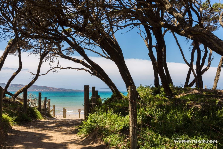 Pathway to Paradise     Great Ocean Road Australia