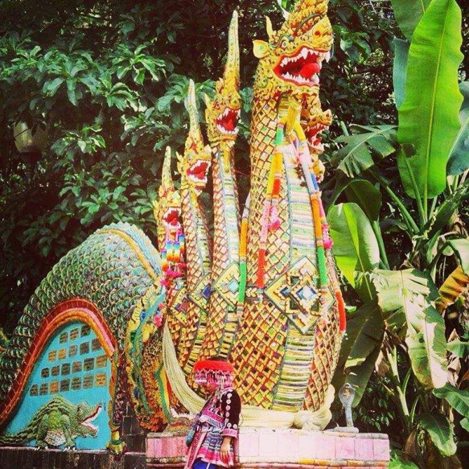 Hibiscus & Nomada : - - Chiang Mai Temple